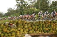 BABAHOYO, Los Rios (06-08-06).- XXVII Vuelta a la República de Ciclismo, en la etapa Santo Domingo-Babahoyo. Alfredo Cárdenas.